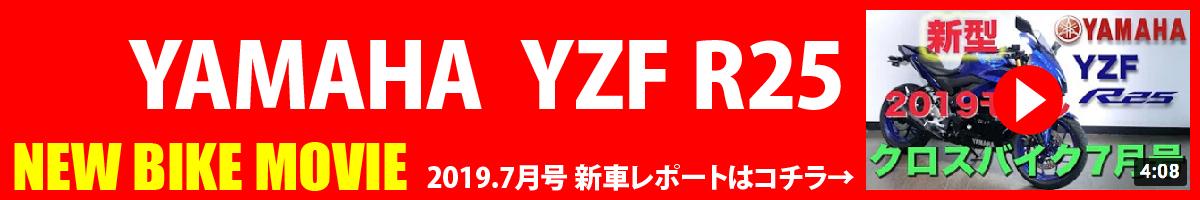 ヤマハ YZF-R25の中古バイク